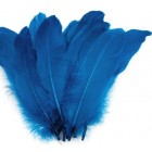 Husí Peří Modrá 5 ks